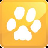 pet-urine-icon